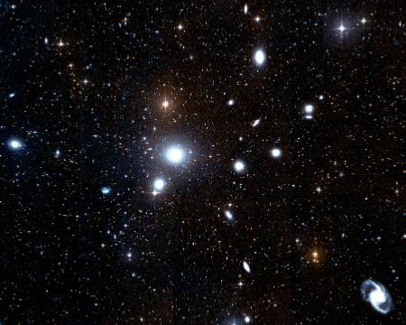 The Fornax Cluster